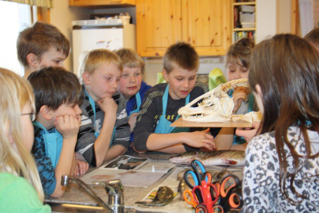 Ryhmä lapsia tutkimassa pöydällä olevaa kalaa