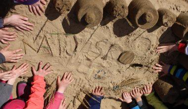 Anmälan till ambulerande naturskolan är nu öppen!