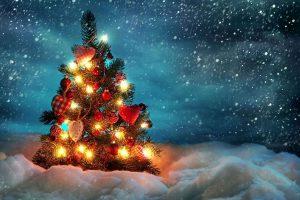 Kuvassa runsaasti koristeltu joulukuusi lumisessa metsässä, hämärä ilta, tähtitaivas.